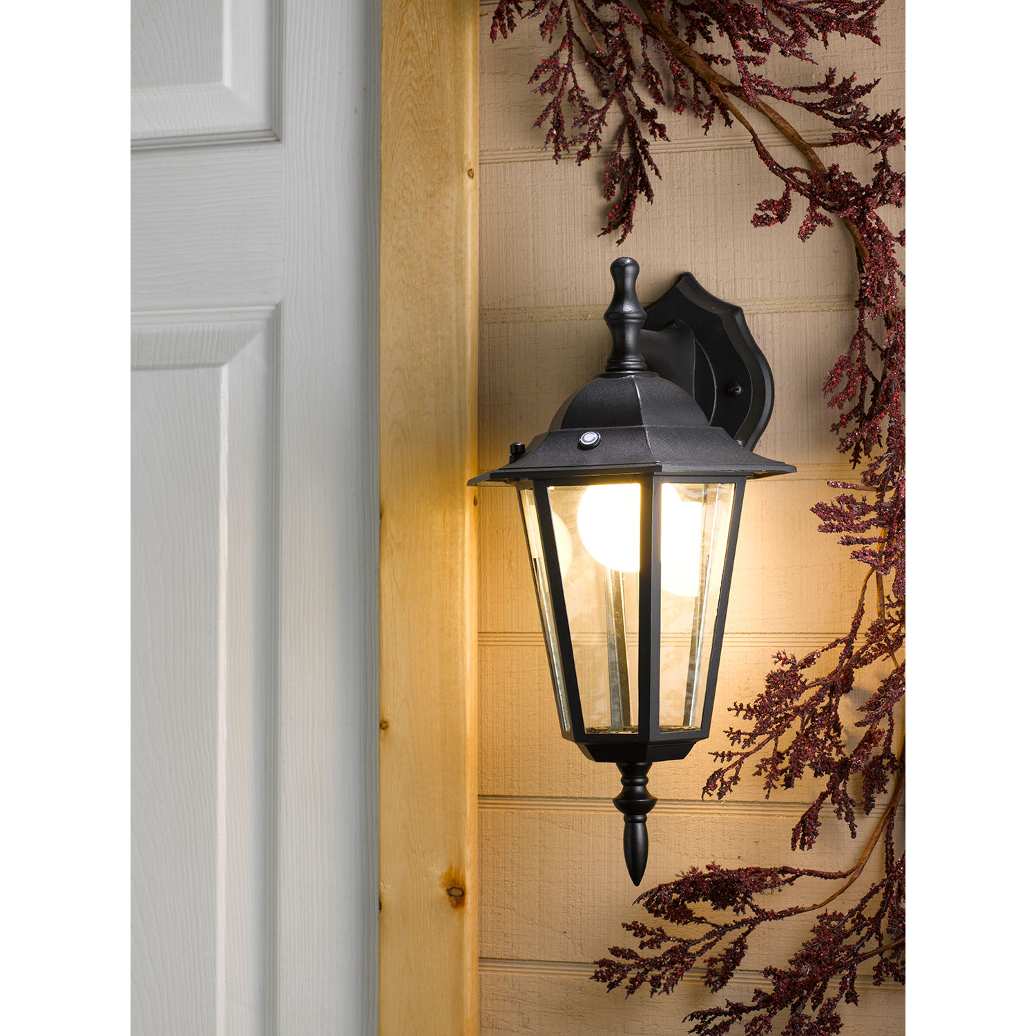 outdoor wall mount light photo - 6
