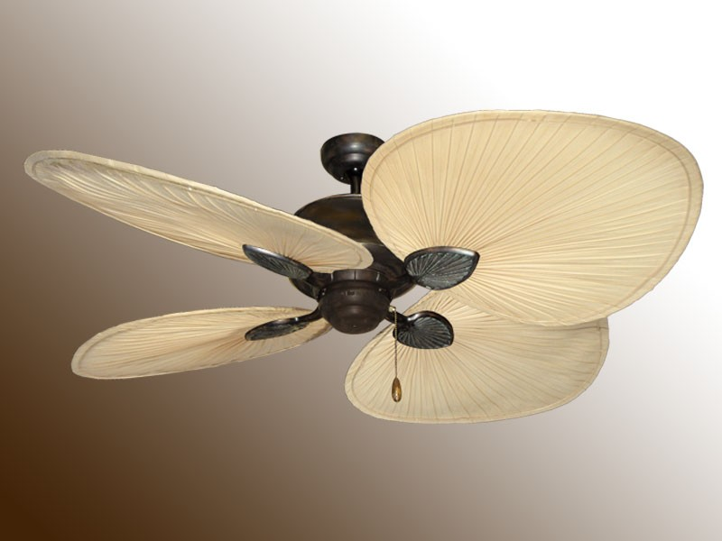 palm frond ceiling fan photo - 2