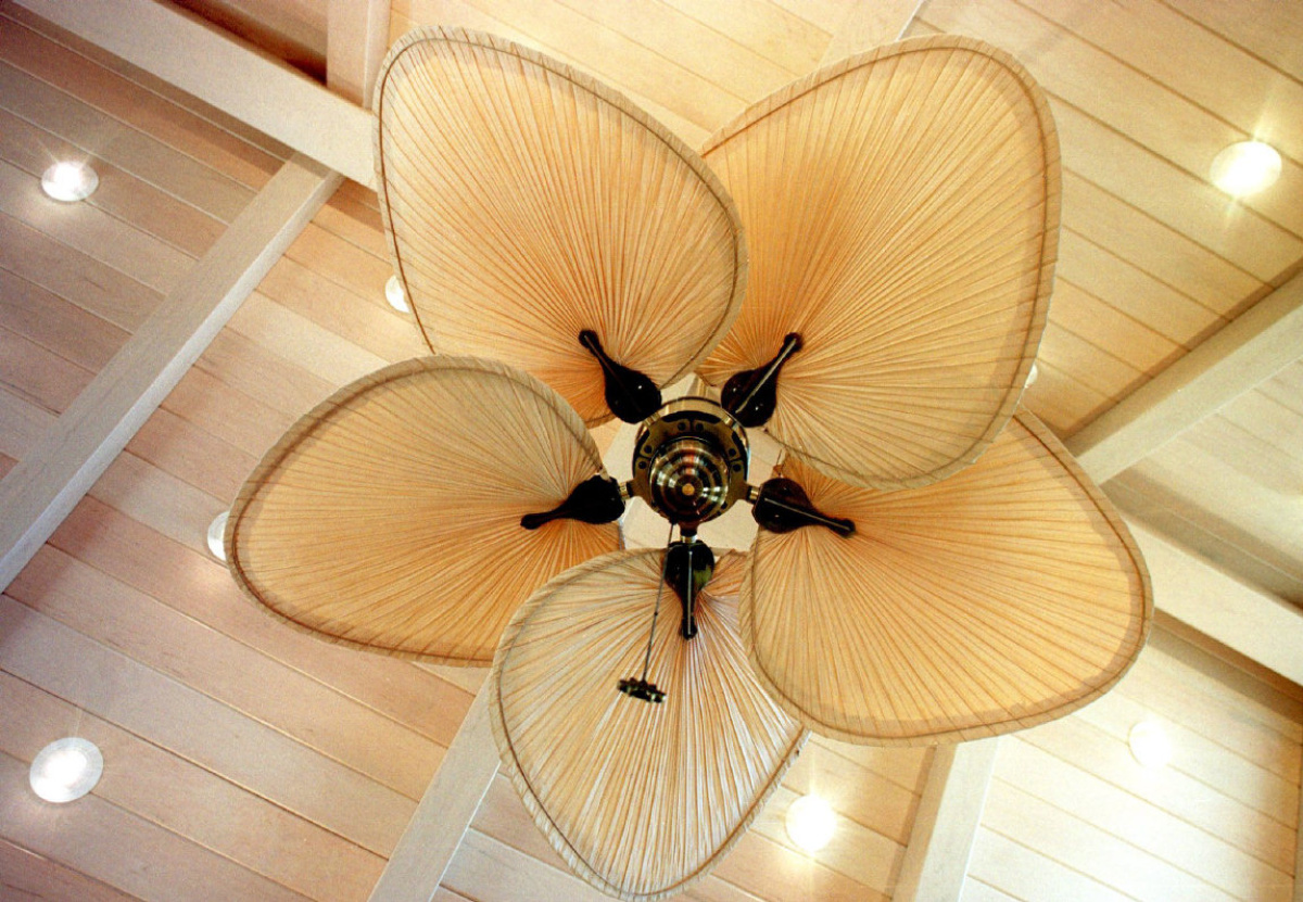 palm frond ceiling fan photo - 6