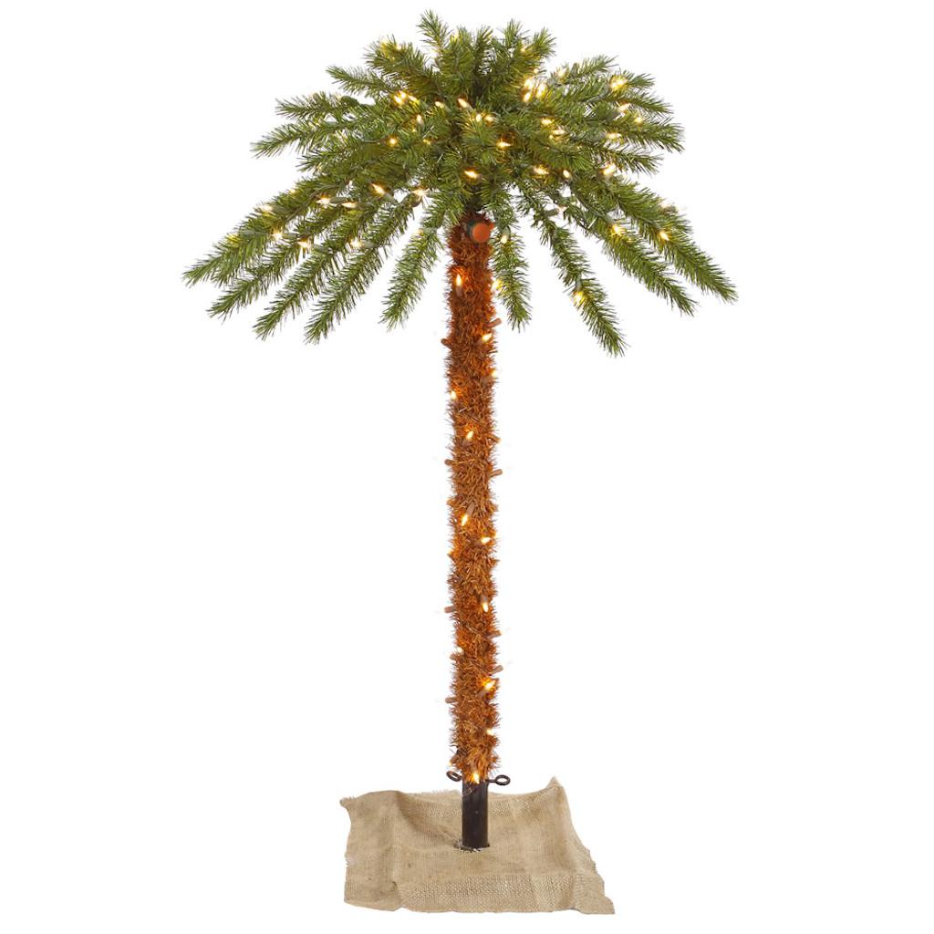 palm tree outdoor lights photo - 2