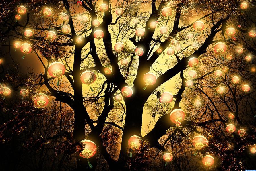 paper lantern lights outdoor photo - 3