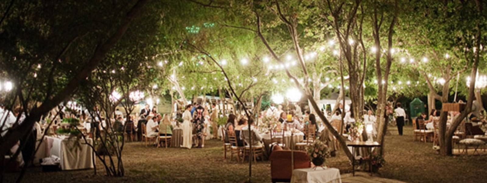 party outdoor lights photo - 10