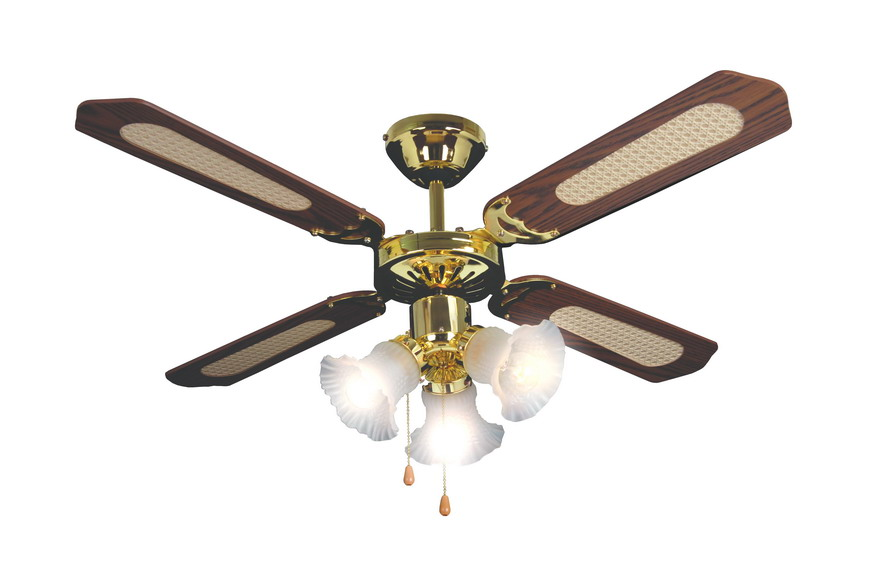 pendant light ceiling fan photo - 1