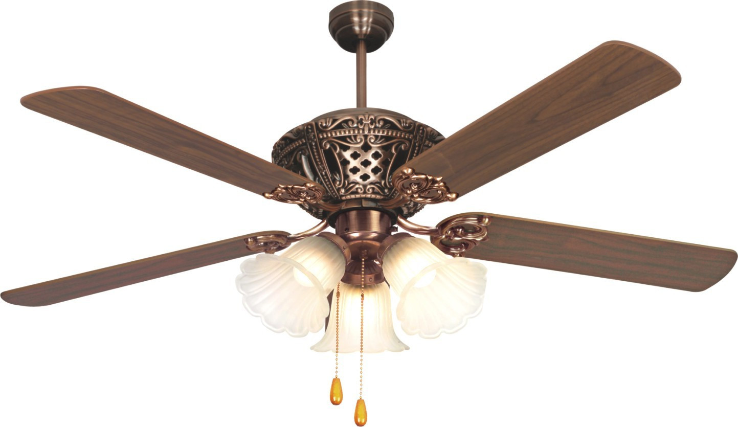 pendant light ceiling fan photo - 9