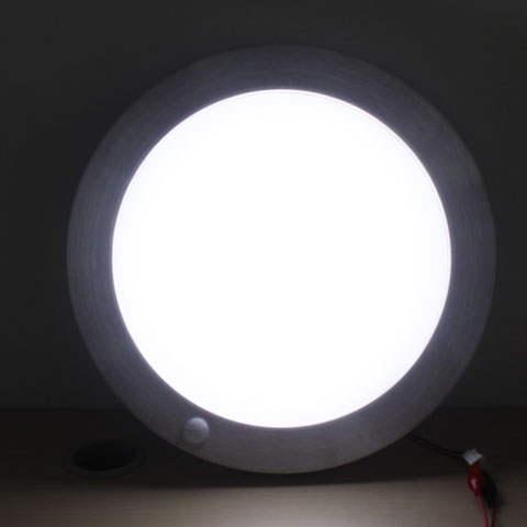 pir ceiling light photo - 4