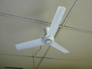 plug in ceiling fans photo - 6