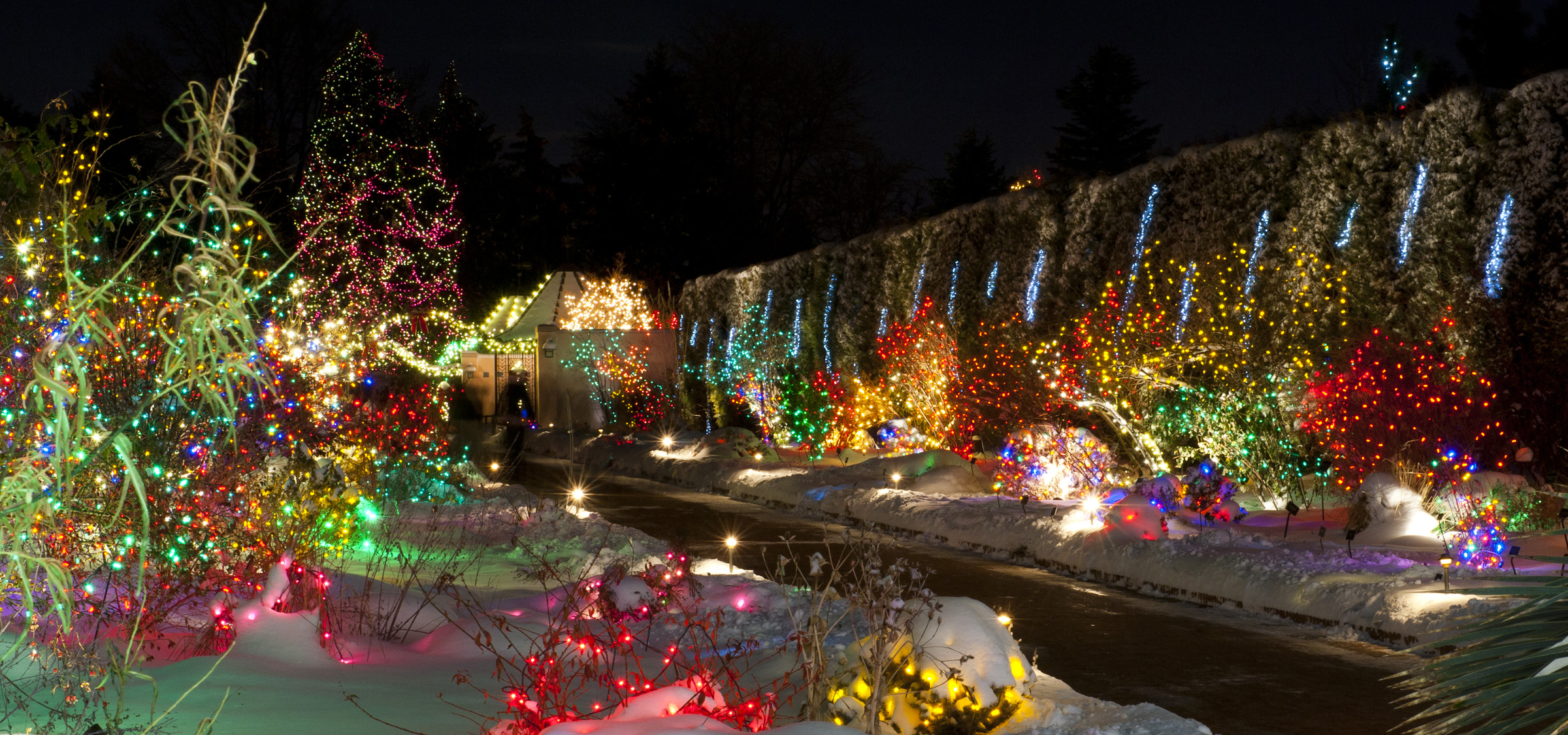 What to light up during christmas in outdoor 15 for Professional outdoor christmas decorations