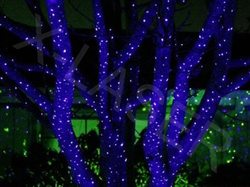 professional outdoor christmas lights photo - 8