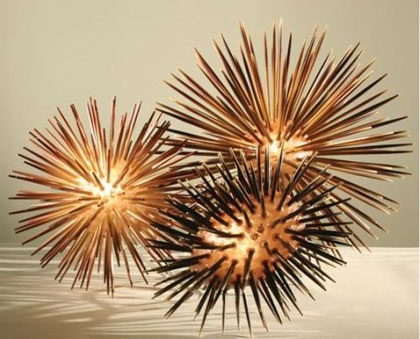 sea urchin lamp photo - 10