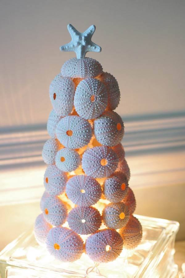 sea urchin lamp photo - 5
