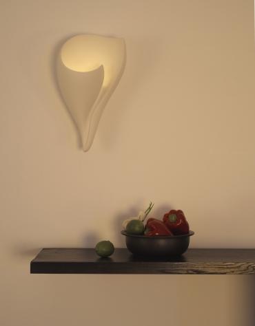 shell wall lights photo - 3