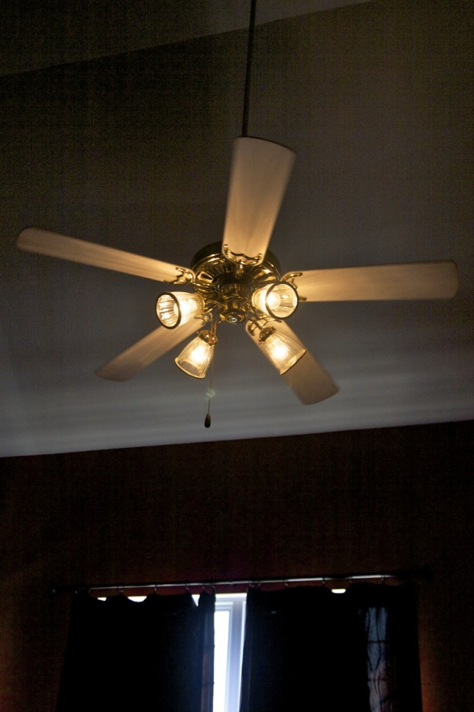 spray paint ceiling fan photo - 2