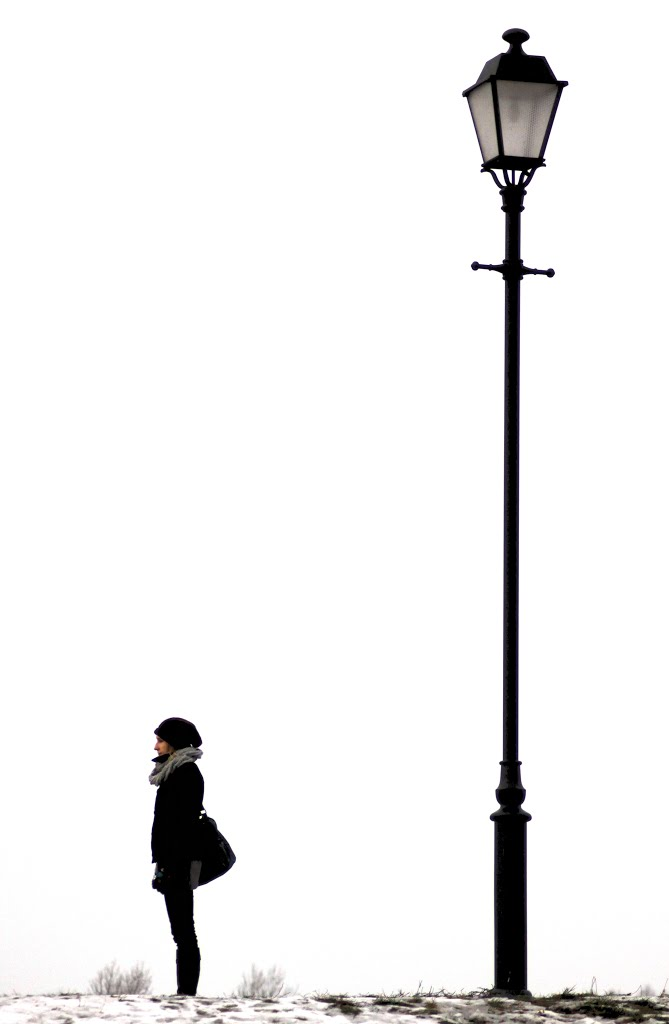 street lamps photo - 8