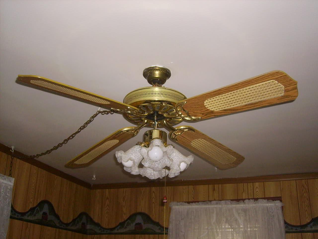 swag ceiling fan photo - 1