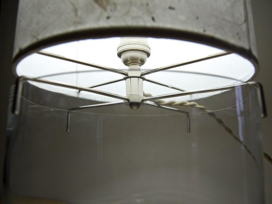 terrarium lamp photo - 3