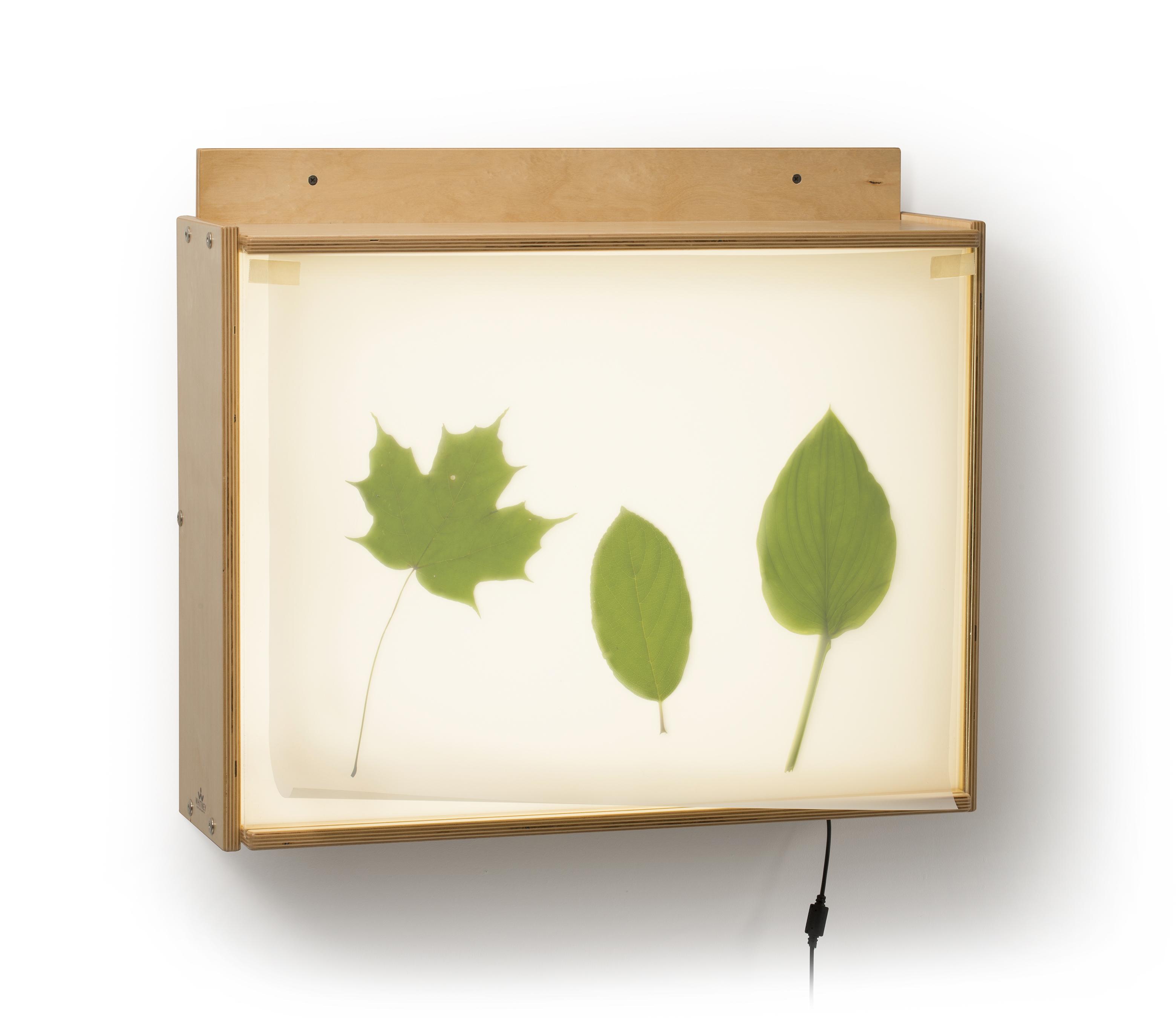 wall mounted light box photo - 1