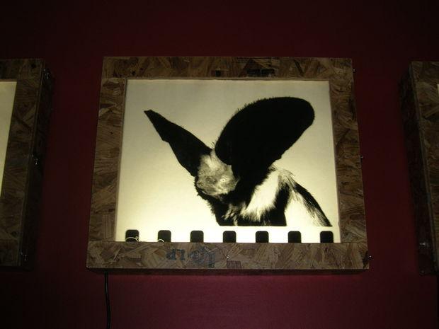 wall mounted light box photo - 2
