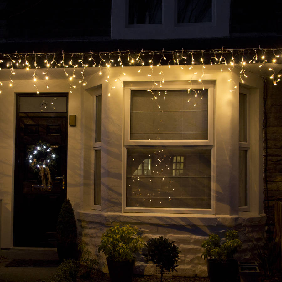 warm white outdoor lights photo - 2