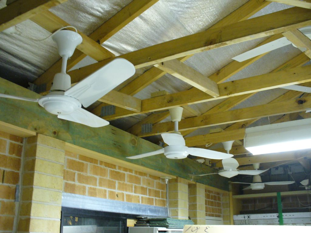 wattmaster ceiling fans photo - 4