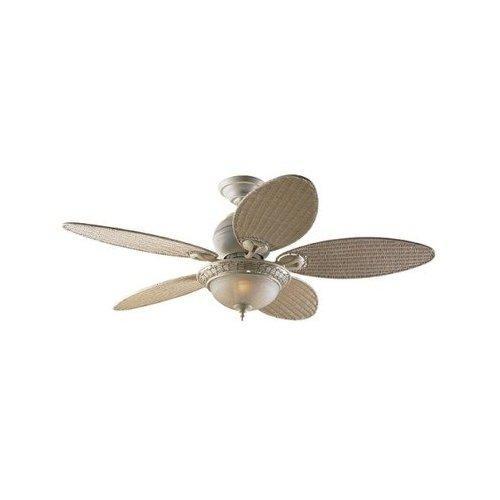 wicker ceiling fans photo - 4