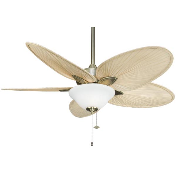 windpointe ceiling fan photo - 1