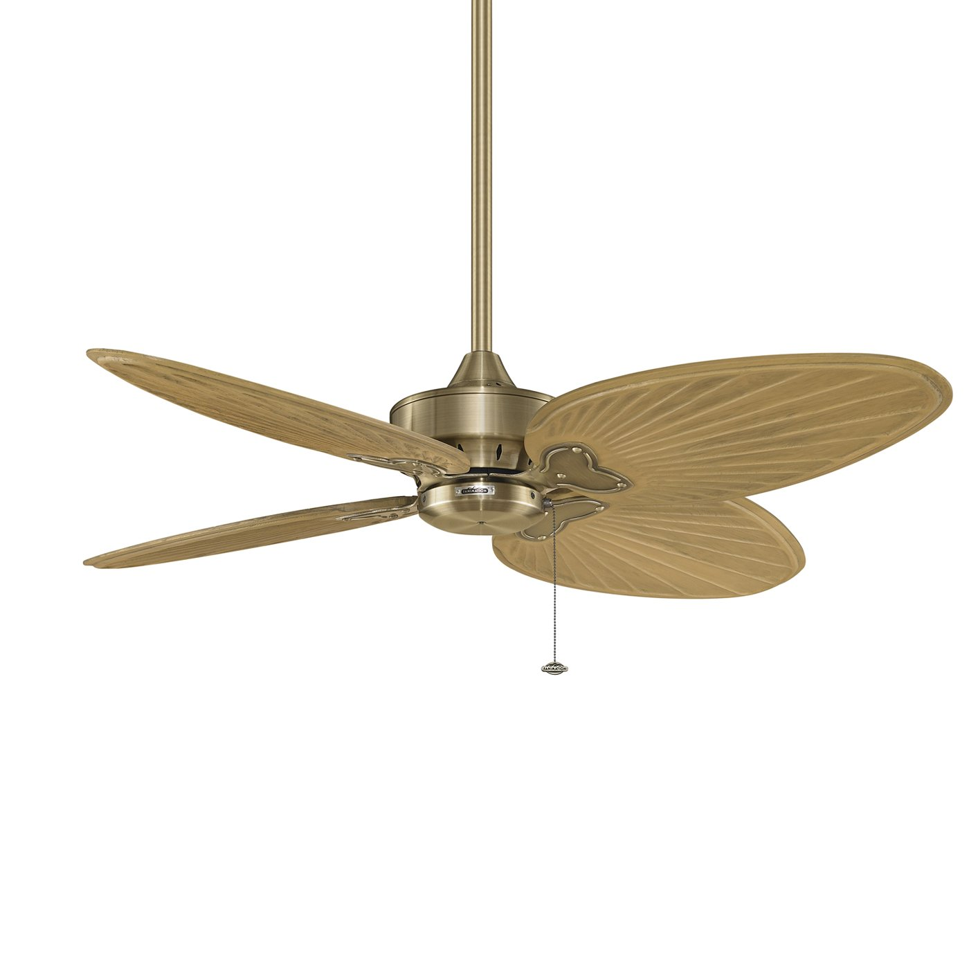 windpointe ceiling fan photo - 5