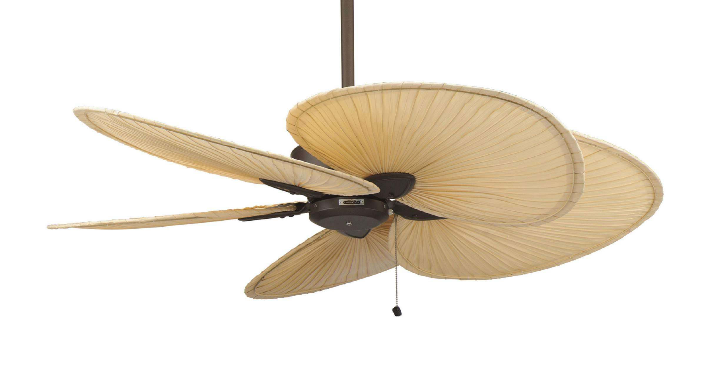 windpointe ceiling fan photo - 8