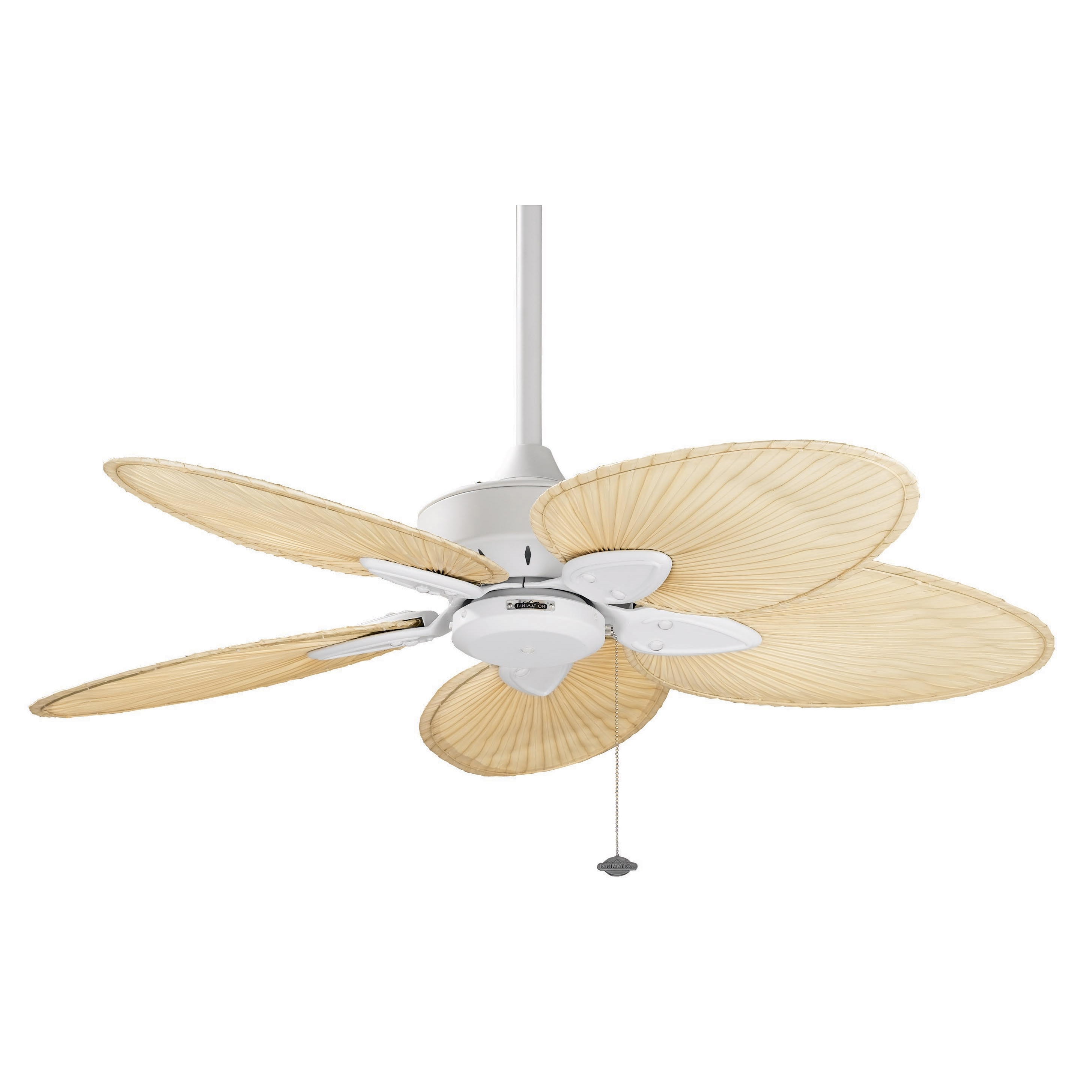 windpointe ceiling fan photo - 9